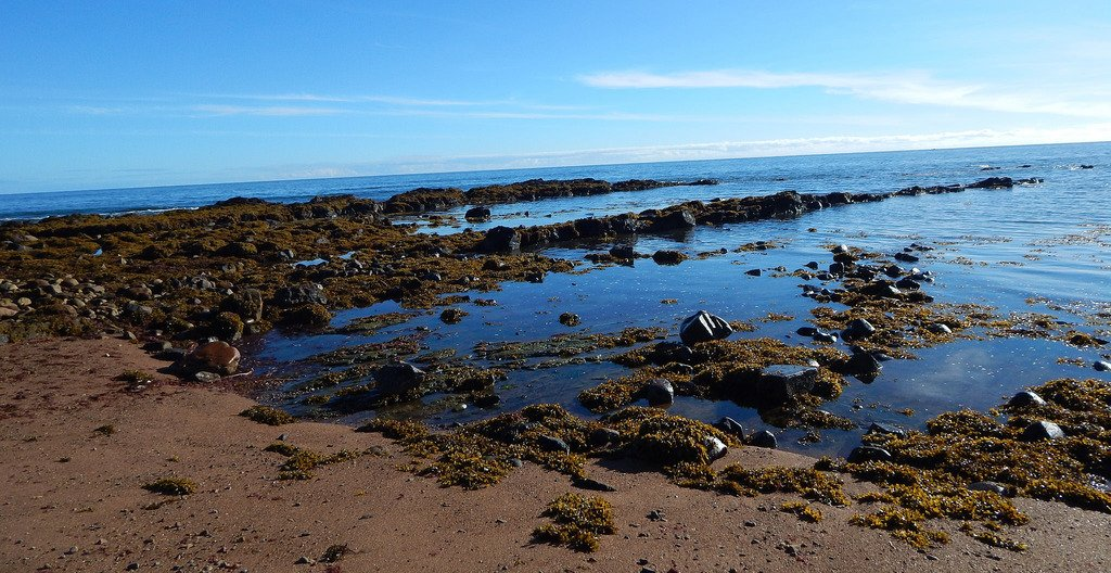 Helmsdale Beach Showing Durasic Rock Formations